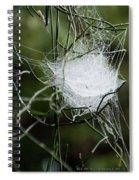 Spider Web Basket Spiral Notebook
