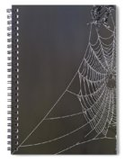 Spider Web Covered In Dew Drops Spiral Notebook