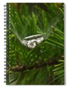 Spider Webs And Engagement Ring 11 Spiral Notebook