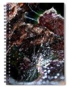 Spiderman's Lair Spiral Notebook