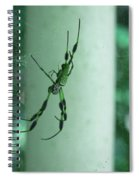 Spiders - Mr And Mrs Spiral Notebook