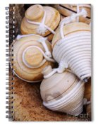 Spinning Tops Spiral Notebook