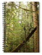 Spirit Of The Pacific Northwest Spiral Notebook