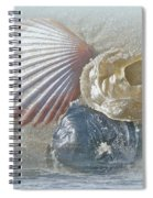 Spirit Of The Sea - Seashells And Surf Spiral Notebook