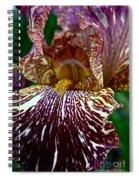 Splashed Iris Spiral Notebook