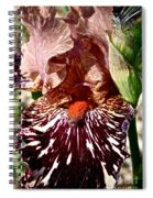 Splattered Iris Spiral Notebook
