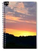 Splendor Of The King Spiral Notebook
