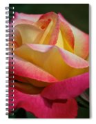 Spoken Softly Spiral Notebook