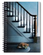 Spooked Cat By Stairs Spiral Notebook