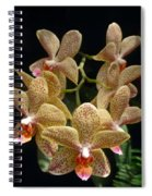 Spotted Orchids Spiral Notebook