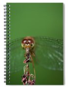 Spread Your Wings And Fly Away Spiral Notebook