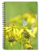 Spring Azure And Friend Spiral Notebook