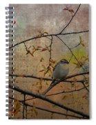 Spring Bird Spiral Notebook
