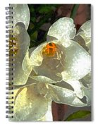 Spring Blooms Spiral Notebook
