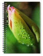 Spring Flower Spiral Notebook