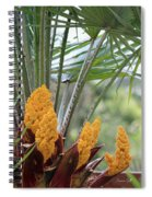 Spring Fruit Spiral Notebook