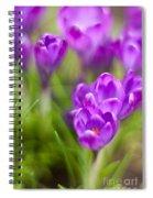 Spring In The Garden Spiral Notebook