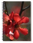 Spring Pop Spiral Notebook