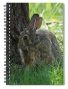 Spring Rabbit Spiral Notebook