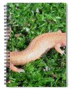 Spring Salamander Spiral Notebook