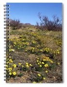 Spring Surprise Franklin Mountains Spiral Notebook