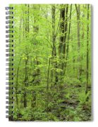 Spring Woods Spiral Notebook
