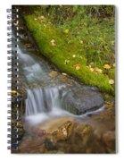 Sprinkle Of Autumn Spiral Notebook