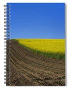 Sprouting Field Of Sunflowers And Field Of Rape. Auvergne. France. Europe Spiral Notebook