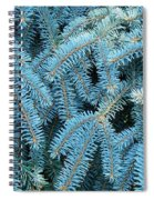Spruce Conifer Nature Art Prints Trees Spiral Notebook