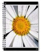 Square Daisy - Close Up 2 Spiral Notebook
