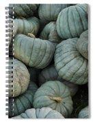 Squash Pile Spiral Notebook