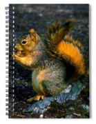 Squirrel At Riverfront Park Spiral Notebook