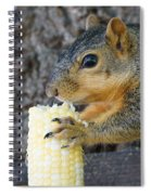 Squirrel Holding Corn Spiral Notebook