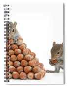 Squirrels And Nut Pyramid Spiral Notebook