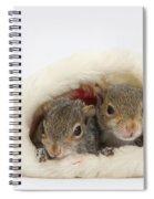 Squirrels In Santa Hat Spiral Notebook