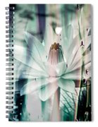 St. James Hotel Spiral Notebook