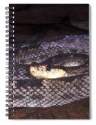 St. Lucia Pit Viper Spiral Notebook