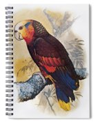 St Vincent Amazon Parrot Spiral Notebook