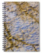 St Vrain River Reflection Spiral Notebook