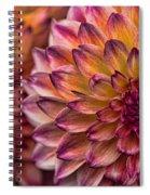 Stacked Dahlias Spiral Notebook