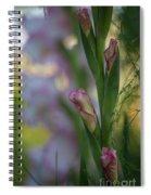 Stalk Of Light Spiral Notebook