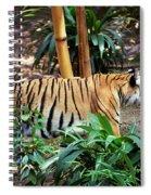 Stalking Spiral Notebook