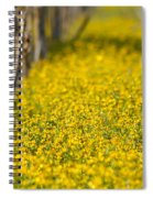 Stalks And Sunshine Spiral Notebook