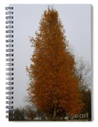 Stand Tall Big Tree Spiral Notebook