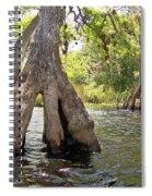 Standing Firm Spiral Notebook