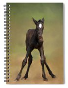 Standing On All Fours Spiral Notebook