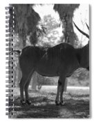 Standing Tall In Black And White Spiral Notebook
