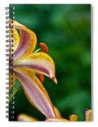 Star Lily Spiral Notebook
