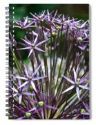 Star Of Persia Spiral Notebook