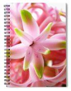 Star Of The Show Hyacinth  Spiral Notebook